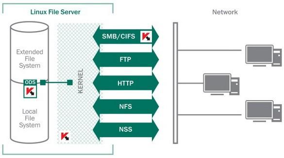 Компьютерные сети компаний часто имеют сложную структуру, в которой присутствуют различные операционные системы.