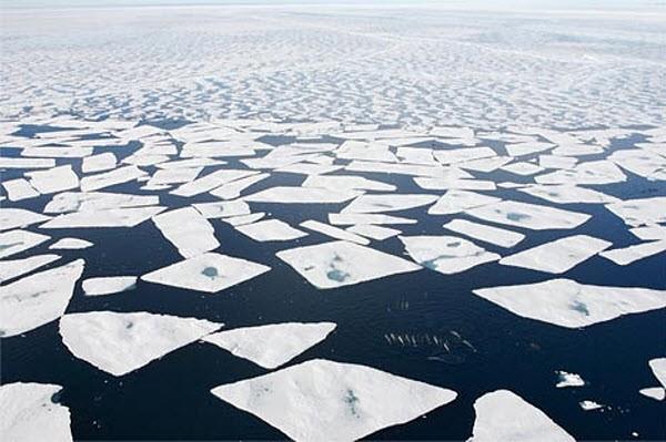 Арктика расстает в 2019 году