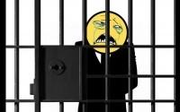 Арестовано  32 участника хакерской компании Anonymous