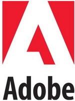 За нелегальное ПО Adobe астраханские пираты приобрели период
