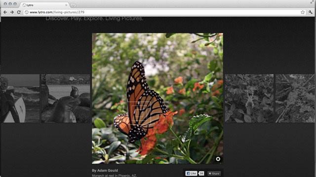 Lytro открывает новую эру фотографии
