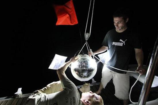 Гигантские амебы обнаружены в Марианской впадине