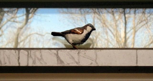 Киев кто то скрашивает муляжами птиц (фото)